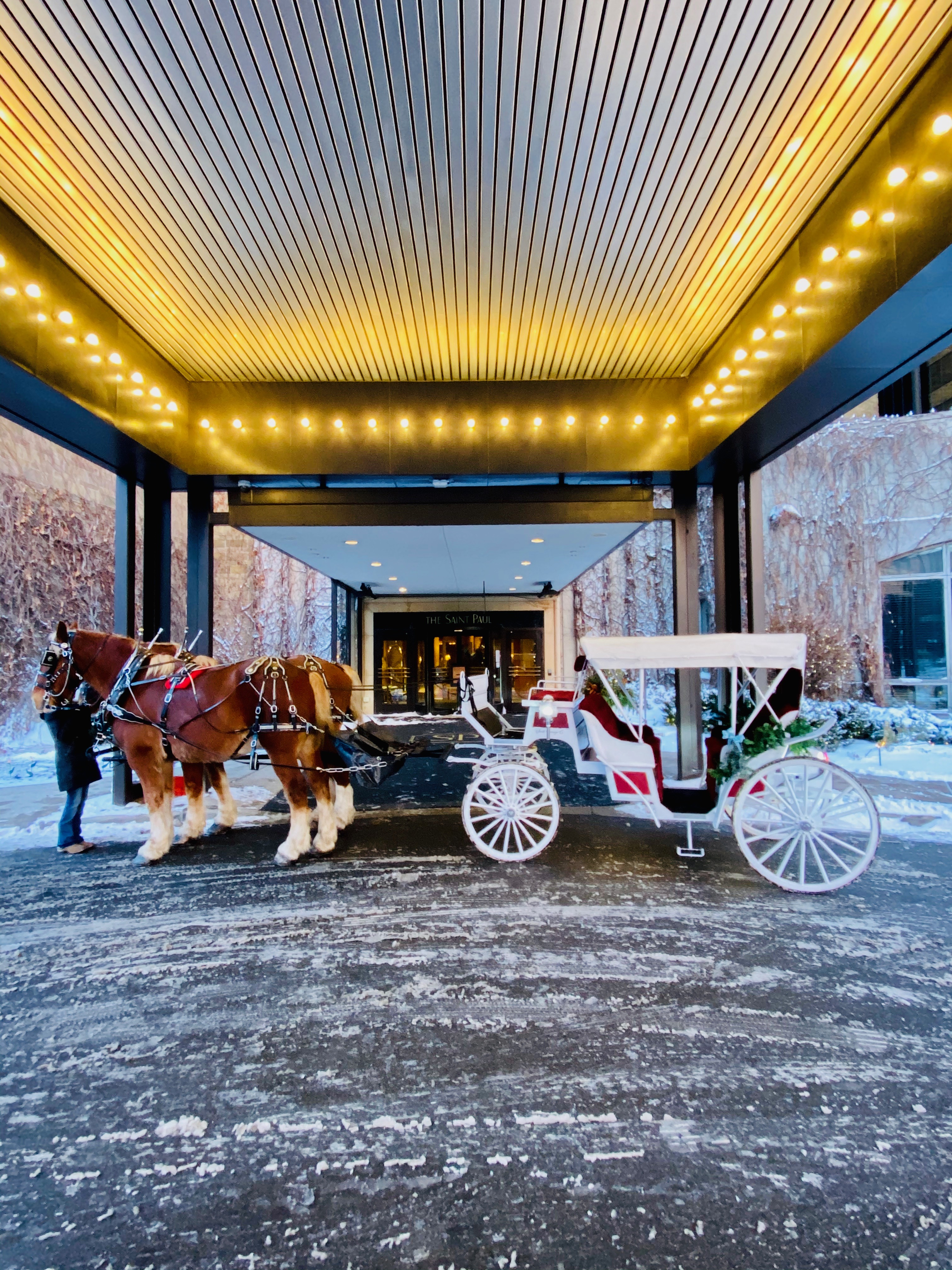 Horse and carriage wedding. St Paul Hotel. Belgian horses.