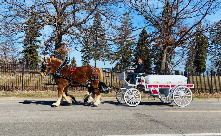 Horse and carriage funeral Minnesota